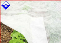 Breathable Non Woven Ground Vải Để kiểm soát cỏ dại, Fabric Cover Fabric 15gsm - 40gsm